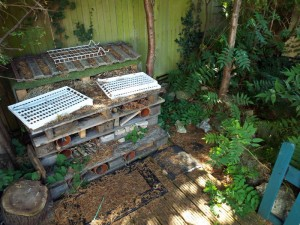 Check into the bug hotel